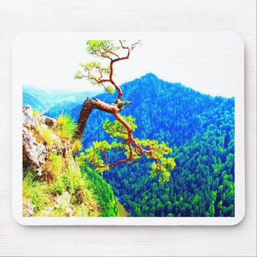 Strong life mountain top tree peek view tatra pola mouse pad