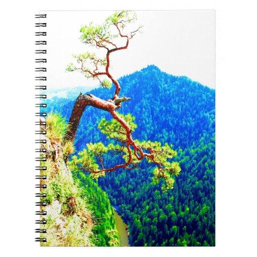 Strong life mountain top tree peek view tatra pola notebooks