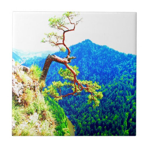 Strong life mountain top tree peek view tatra pola ceramic tiles