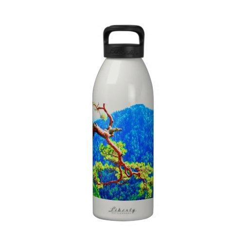 Strong life mountain top tree peek view tatra pola reusable water bottle