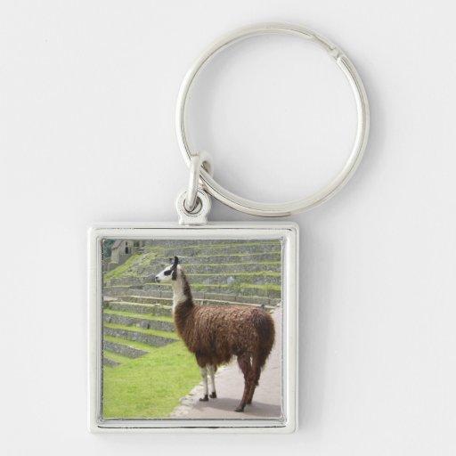 strong llama peru keychains