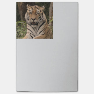 Strong Tiger Post-it Notes