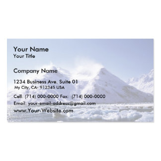 Strong West Wind in Harriman Fjord Pack Of Standard Business Cards