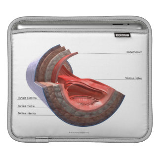 Structure of the Vein Wall iPad Sleeve