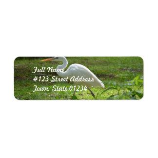 Strutting Egret Return Address Label