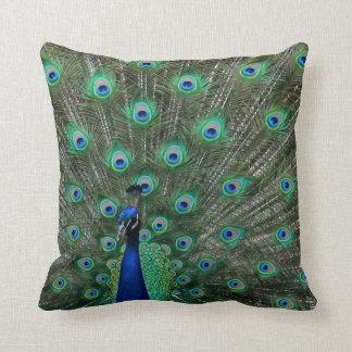 Strutting Male Peacock Cushions