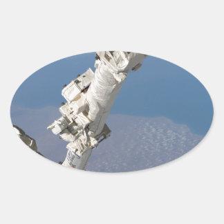 STS-114_Steve_Robinson_on_Canadarm2.jpg Oval Sticker