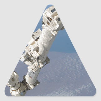 STS-114_Steve_Robinson_on_Canadarm2.jpg Triangle Sticker