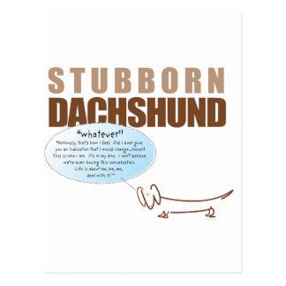 Stubborn Dachshund..WHATEVER ! Postcard
