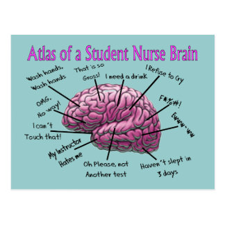 Student Nurse Gifts Postcard