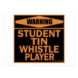Student Tin Whistle Player Postcard