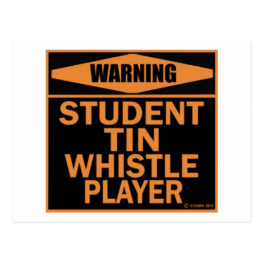 Student Tin Whistle Player Post Card
