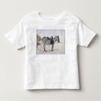 Studies of Animals Toddler T-Shirt