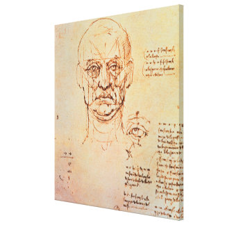 Studies of the Proportions of the Face and Eye, 14 Canvas Print