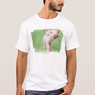 Studio Cut Out of a Piglet Standing T-Shirt