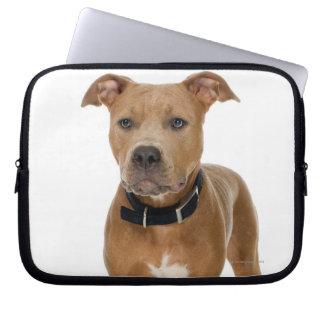 Studio portrait of American pit bull puppy Laptop Sleeve