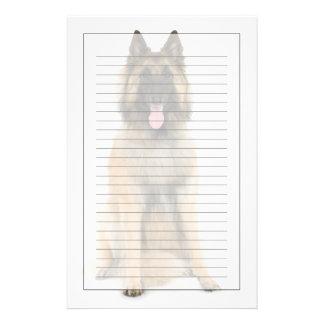 Studio portrait of Belgian shepherd dog Stationery