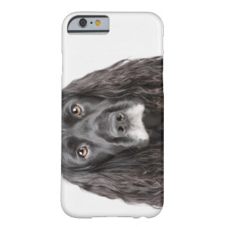 Studio portrait of cocker spaniel barely there iPhone 6 case