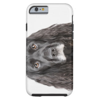 Studio portrait of cocker spaniel tough iPhone 6 case