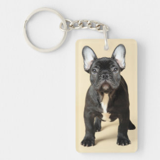 Studio portrait of French bulldog puppy standing Double-Sided Rectangular Acrylic Key Ring