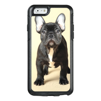 Studio portrait of French bulldog puppy standing OtterBox iPhone 6/6s Case