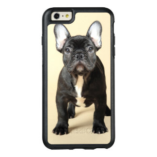 Studio portrait of French bulldog puppy standing OtterBox iPhone 6/6s Plus Case