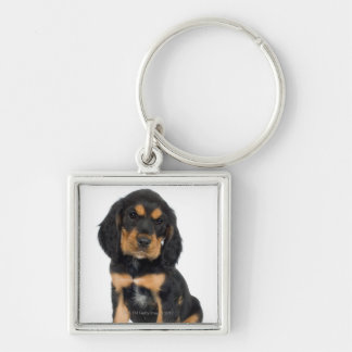 Studio portrait of Rottweiler puppy Key Ring