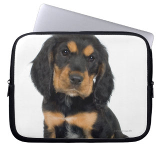 Studio portrait of Rottweiler puppy Laptop Sleeve