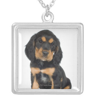 Studio portrait of Rottweiler puppy Silver Plated Necklace