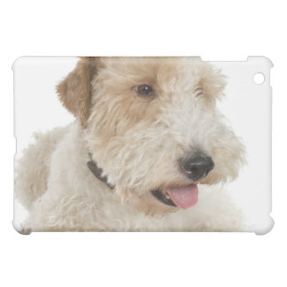 Studio portrait of Wheaten terrier puppy iPad Mini Cases