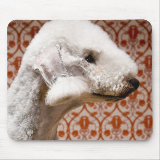 Studio shot of Bedlington Terrier Mouse Mat