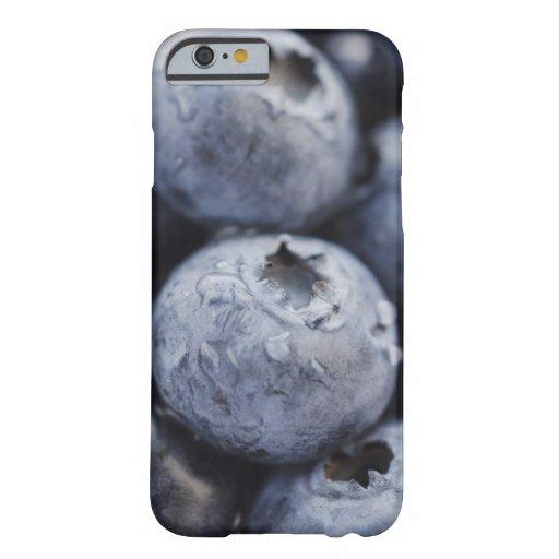 Studio shot of blueberries 2 iPhone 6 case