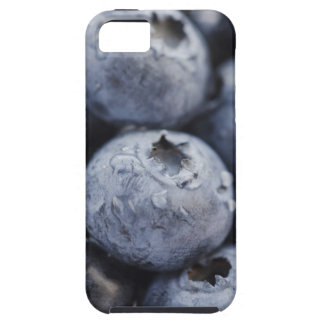 Studio shot of blueberries 2 iPhone 5 cases