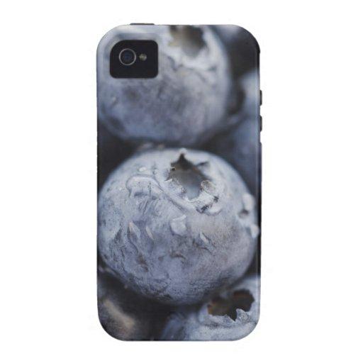 Studio shot of blueberries 2 iPhone 4/4S cases