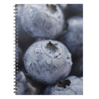 Studio shot of blueberries 2 note book