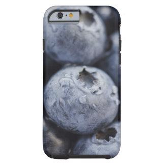 Studio shot of blueberries 2 tough iPhone 6 case
