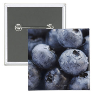 Studio shot of blueberries 3 15 cm square badge