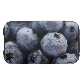 Studio shot of blueberries 3 tough iPhone 3 covers