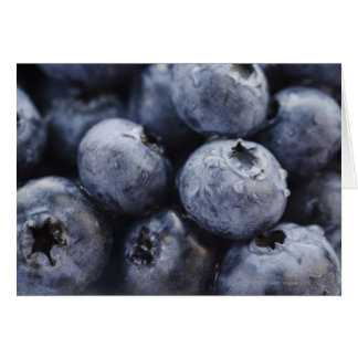 Studio shot of blueberries 3 greeting card