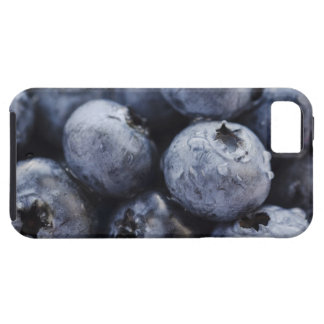 Studio shot of blueberries 3 iPhone 5 cases