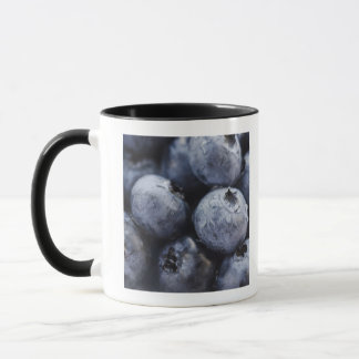 Studio shot of blueberries 3 mug