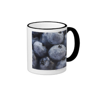 Studio shot of blueberries 3 mug