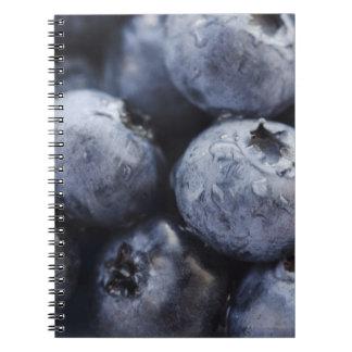 Studio shot of blueberries 3 spiral notebooks