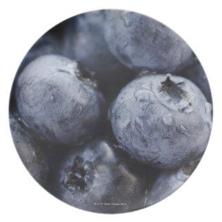 Studio shot of blueberries 3 plate