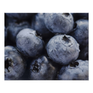 Studio shot of blueberries 3 poster