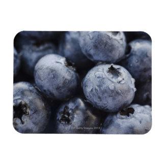 Studio shot of blueberries 3 vinyl magnets