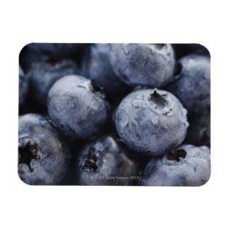 Studio shot of blueberries 3 rectangular photo magnet