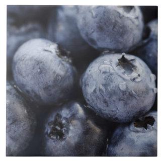 Studio shot of blueberries 3 tile
