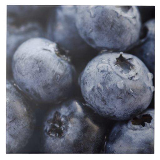 Studio shot of blueberries 3 tiles