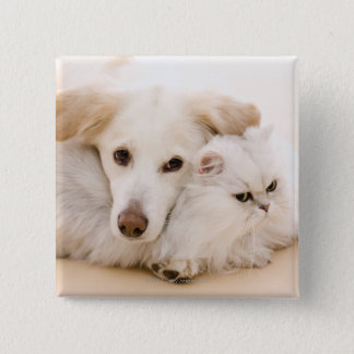 Studio shot of cat and dog 15 cm square badge